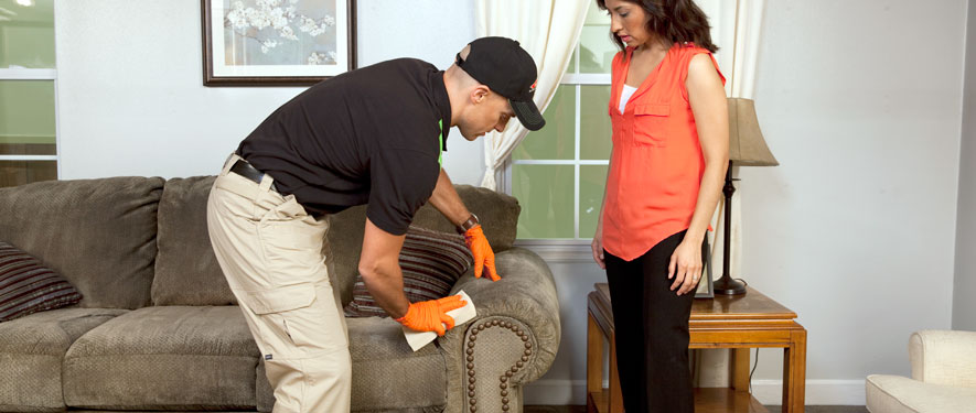 Fort Dodge, IA carpet upholstery cleaning
